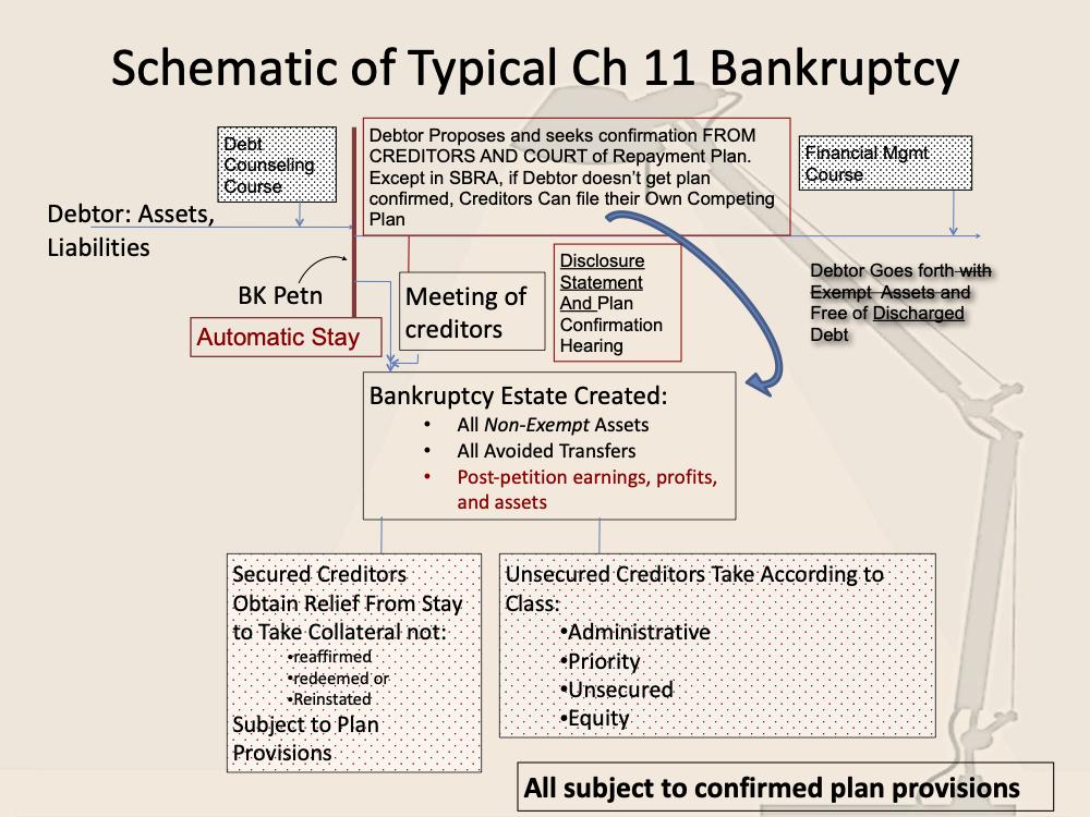 Chapter 11 Infogram