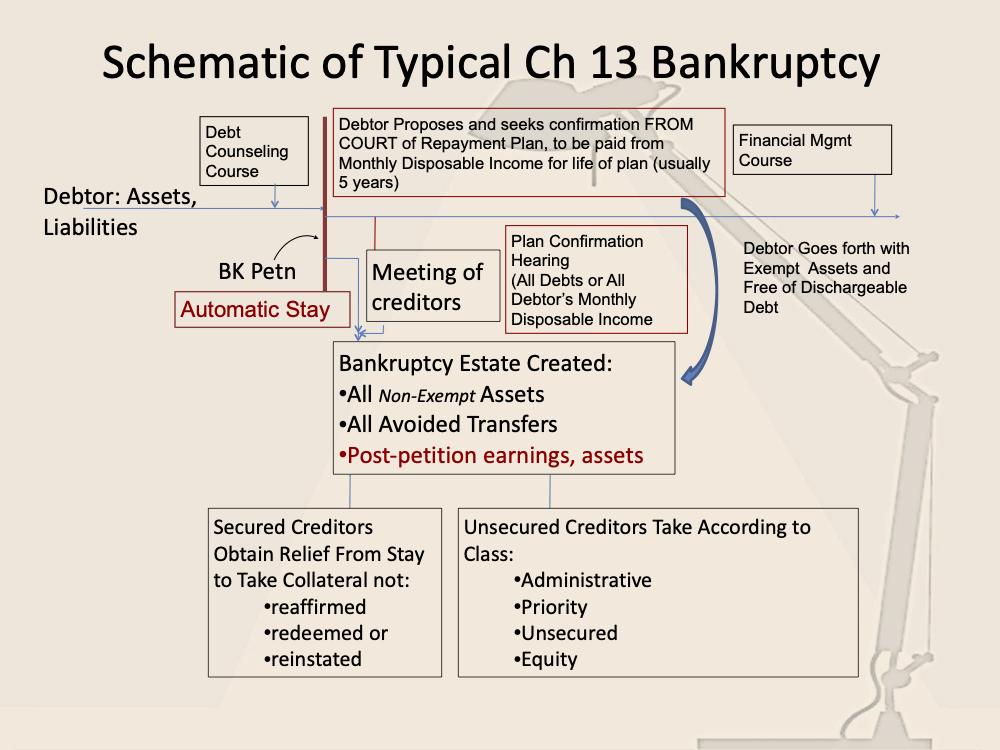 Chapter 13 Infogram